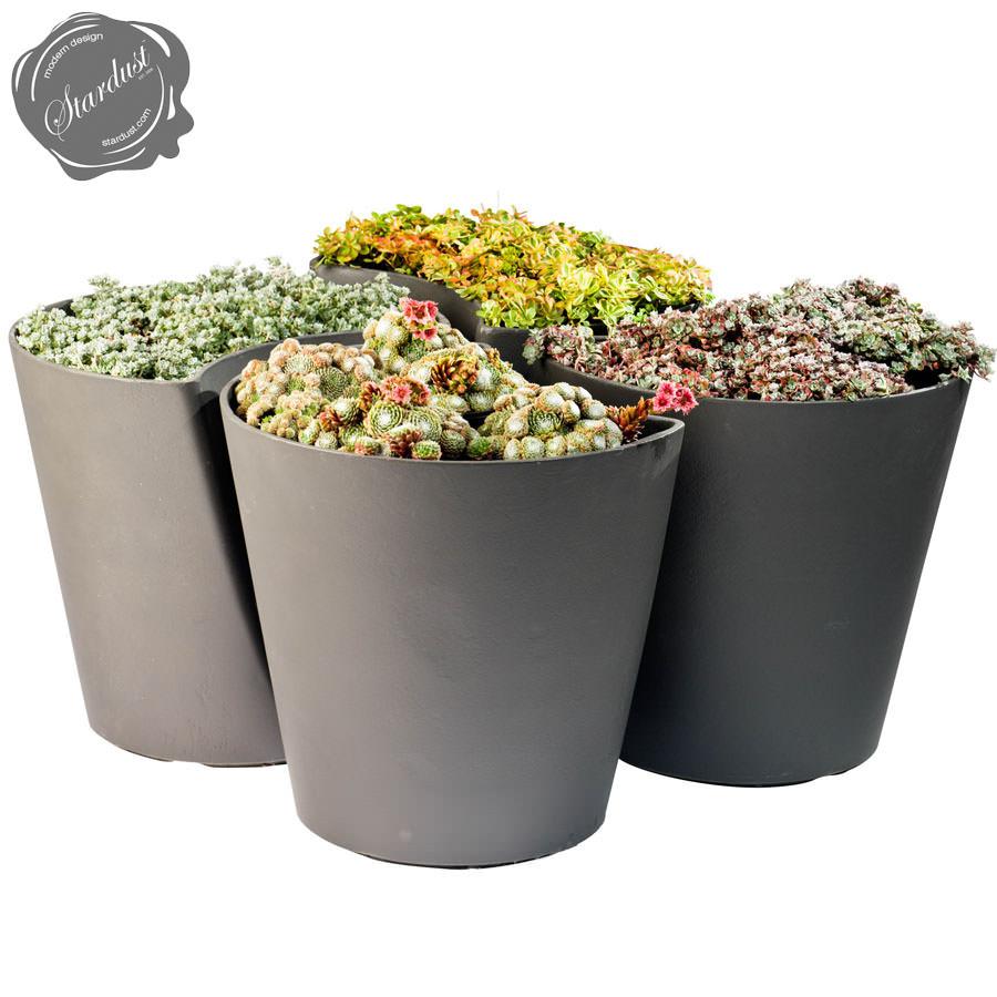 ginkgo biloba contemporary modern planter pot  stardust - ginkgo biloba contemporary modern planter pot