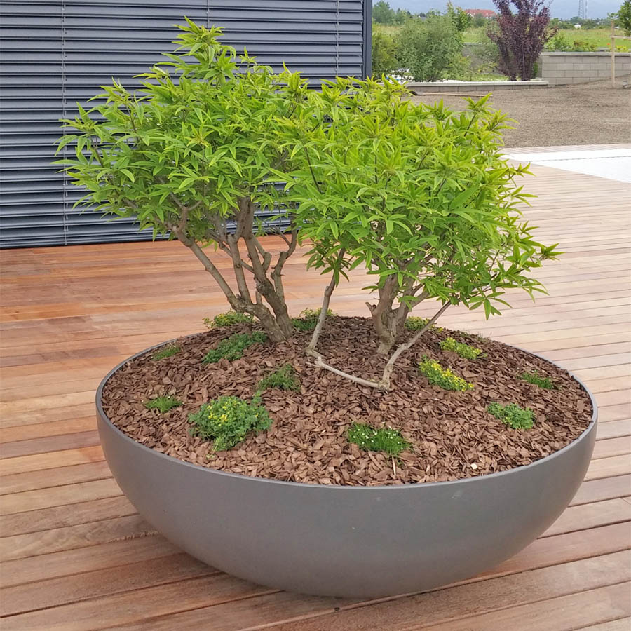 Bonsai Large Commercial Round Low Profile Modern Bowl Planter 44 54 Inch